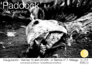Paddock - José Gallardo