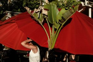Street photo scene - Manuel ibañez