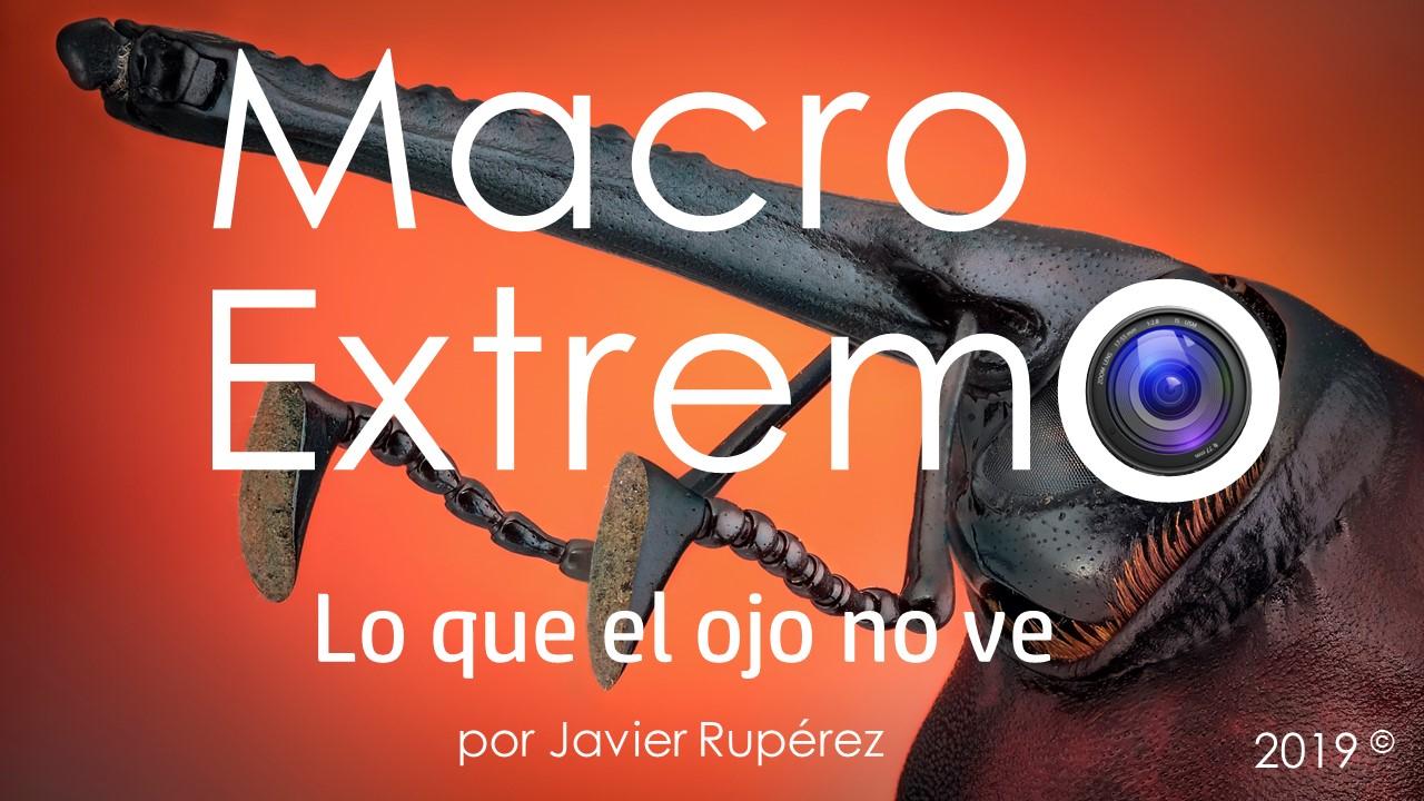 Macro Extremo, Javier Rupérez