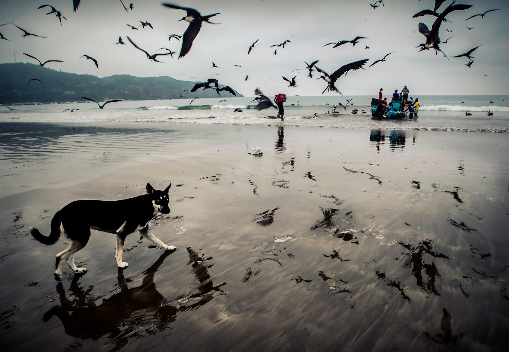 De la Psicología a la Fotografía, por Alfredo Oliva