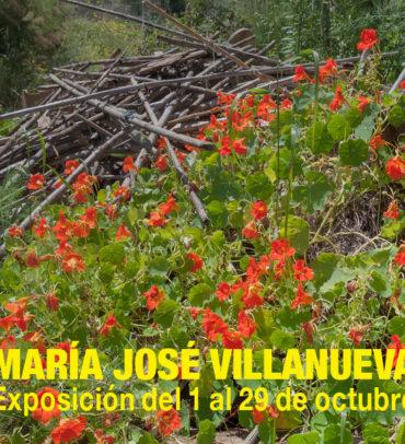 Des-Natural, de Mª José Villanueva